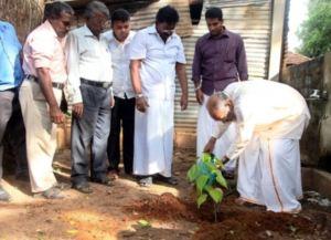 CM Wigneswaran planting tree